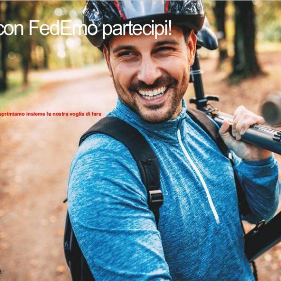 FedEmo | Brochure 2020